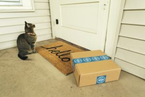Moving to a US Virgin Islands home with a cat and package sitting outside front door